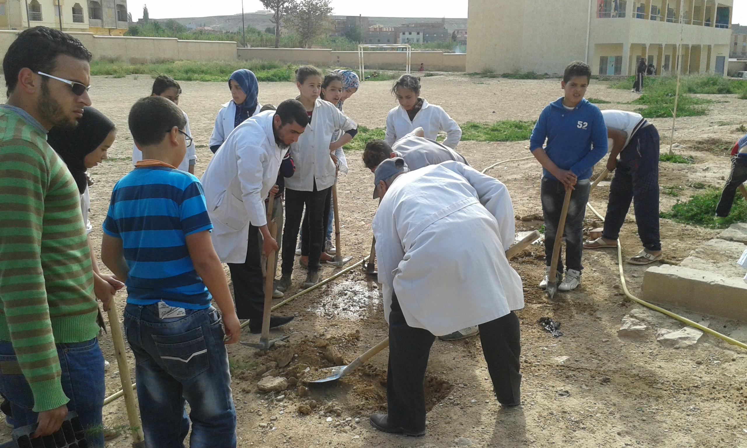 شبابنا للتنمية تغرس 130 شجرة بالمؤسسات التعليمية