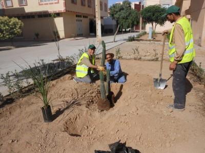 جمعية الرياض بميدلت تستمر في أنشطتها البيئية