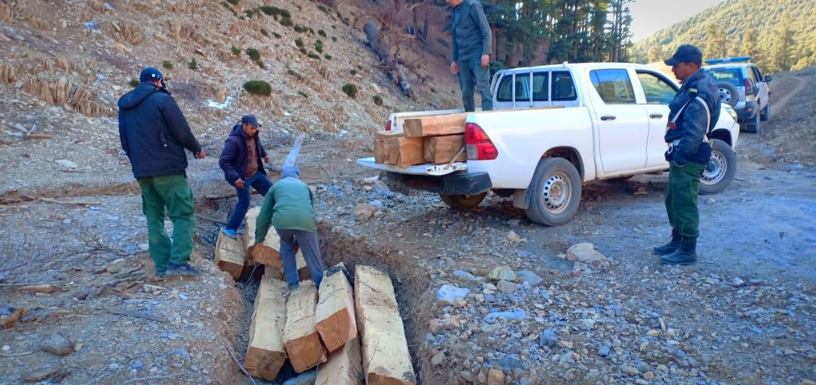 حجز سيارة وخمسة عشر(15) رافدة من خشب الارز بمنطقة تونفيت.
